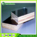 A madeira compensada, película enfrentou a madeira compensada, MDF, placas de microplaqueta, madeira, folheado, PVC, pálete, serragem