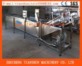 Mit hohem Ausschuss automatischer Gemüsekohl-würfelnder waschender Produktionszweig Tsxq-50