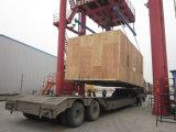 Serviço de transporte de tamanho grande profissional da carga a no mundo inteiro