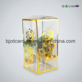 Dustproof Clear Plastic Packaging Box for Adornment Packaginig