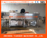 Hoge snelheid en de Concurrerende Flessenspoeler van het Glas Van China tsxp-6000
