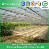 Invernadero de la película plástica para Growing vegetal