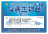 Meerespflanze Microbial Liquid Fertilizer /Water Soluble organisches Fertilizer für Aquatic