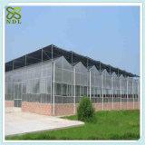 Fabricante da estufa do passatempo de China Angriculture