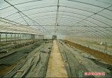 Estufa & conservatório da película do telhado do ziguezague