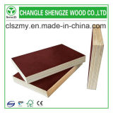 M. Glue Brown Film Faced Plywood de 8-21mm