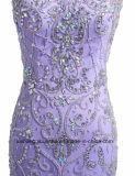 Frauen, die Tulle-Hüllen-Abend-Partei-Abschlussball-Kleid bördeln