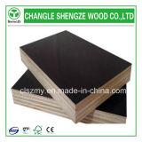 13 capas del álamo de la película de la base hicieron frente a la madera contrachapada