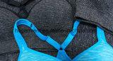 Soutien-gorge de sport rapide pour femmes / Lady, vêtements de course, vêtements de yoga