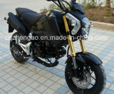 125cc Motorcycle Msx125 per Hot Motorbike (Mini Street Bike X-Treme 125)