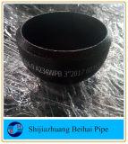 Protezione del tubo del acciaio al carbonio