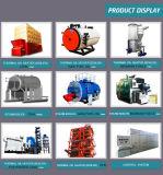 Einzelner Trommel-Kohle-Dampfkessel/Warmwasserboiler