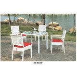 Jardín clásico que cena la silla de China