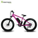 bicyclette électrique du lithium 250W de 36V 10.6ah