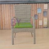 Vector al aire libre de la rota del PE del balcón del ocio del patio del jardín y muebles determinados de la silla