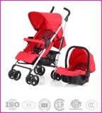 Das einfache Eichhörnchen tragen Qualitäts-Baby-Spaziergänger R68-2