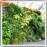 Parede interna plástica artificial da grama verde da decoração do estilo novo
