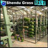 総合的な草非常に安い価格との20mm