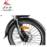 "Fashion 20 "" Aluminum Alloy Foldable Frame 250W E - Bicycle (JSL039XH - 8)"