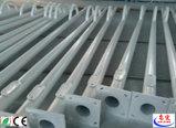 Via palo chiaro del rivestimento LED della polvere di stile cinese