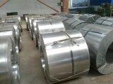 SPCC laminou a bobina de aço para o material de construção