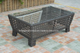 Modern Leisure Outdoor Furniture Rattan Garden Wicker Sofa (TG-7002)