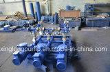 Xinglong Schiene-Hing System der einzelnen Schrauben-Pumpe ein, die im Ölfeld verwendet wurde