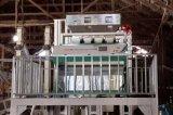 De Sorteerder van de Kleur van de rijst, de Sorterende Machine van de Kleur van de Rijst van Pakistan voor Rijstfabrikant