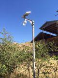 Indicatore luminoso chiaro solare della rete fissa del giardino di tensione 3.7V e del tipo