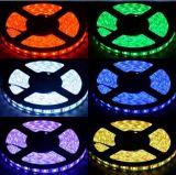 2017 indicatore luminoso di striscia flessibile astuto della striscia 3528 LED della striscia 30LEDs/M 60LEDs/M 120LEDs/M 240LEDs/M 360LEDs/M 480LEDs/M Dimmable LED di SMD3528/5050 LED