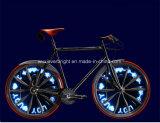 30 indicatore luminoso della rotella dello Spoke di PCS LED dei reticoli 14