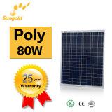 Il poli comitato solare 80W possiede la centrale elettrica della fabbrica