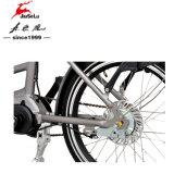 Petite batterie 36V Panasonic 250W Anada Motor Folding Electric Bike