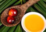 Malaysia entwickelte Bedingungen des Rbd Olein-Palmöl-Cp8 weiter