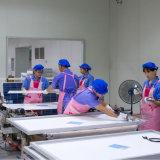 China-Fabrik 12V Gleichstrom-scharfe photo-voltaische Solarpanels