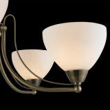Illuminazione Pendant di vetro del ferro europeo per la casa