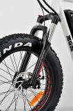 bicicletta elettrica della gomma 20inch dell'incrociatore grasso della spiaggia