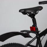 好ましい価格の販売のための脂肪質のタイヤが付いている電気マウンテンバイク