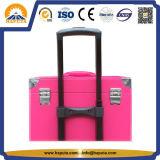 Cassa cosmetica di vendita di modo delle signore di bellezza della cassa calda del carrello per lo specialista del chiodo (HB-6342)
