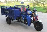 貨物が付いているHydralicのダンプ3の車輪の三輪車