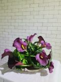 다즙 플랜트의 인공적인 플랜트 그리고 꽃
