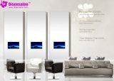 De populaire Stoel Van uitstekende kwaliteit van de Salon van de Stoel van de Kapper van de Spiegel van de Salon (P2002F)