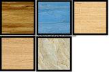 Azulejo rústico del suelo para la pared interior o el suelo