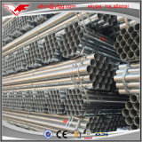 Buen tubo de acero galvanizado En39 del andamio del precio 48.3m m