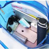 Imperméabiliser le sac transparent Sucrerie-Coloré de plage de dames de sac à main (A085)
