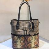 A forma a mais atrasada da serpente ensaca bolsas grandes do Tote da compra do tamanho das mulheres para as senhoras Sy8047