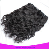 Unverarbeitetes natürliches schwarzes natürliches Wellen-Jungfrau-Kambodschaner-Haar