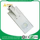 15W 1500-1650lm Ce/EMC/RoHS LEDの太陽街灯