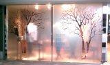 Los gráficos de la ventana/la película de la ventana/la ventana heladas se aferra los gráficos del almacén