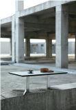 Tavolino da salotto di vendita diretta della fabbrica con vetro Tempered (CT-V5)
